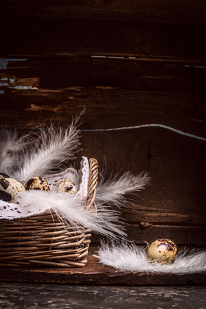 small group of objects: Quail eggs in basket with feathers  on old kitchen wooden table, over rustic background, side view.  Easter greeting card. Close up Stock Photo