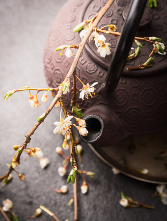 teapot: Iron Teapot with fresh  jasmine blossom branch, close up , toned