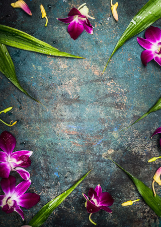 purple flower: Vintage background with purple orchid flowers , top view, frame Stock Photo