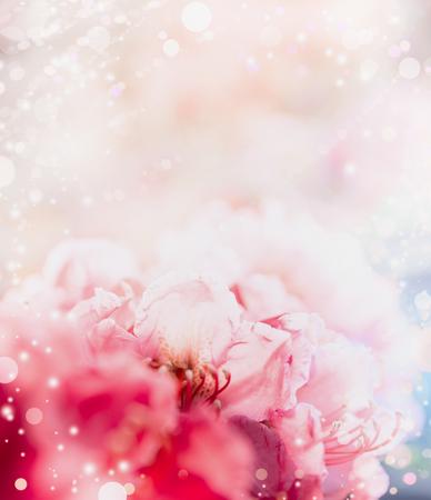 Bloemen romantische pastel grens achtergrond met rode bloemen en bokeh