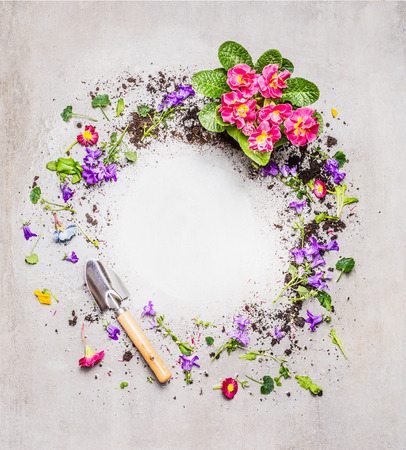 Gardening background with shovel and garden flowers on gray stone background, top view, round frame Stok Fotoğraf