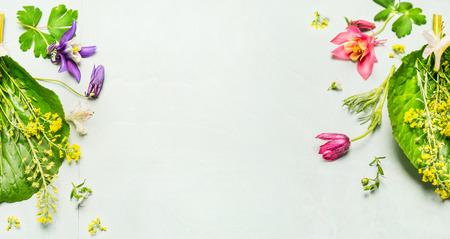 Sfondo erbe con i fiori del giardino di primavera o estate e piante, cornice. Vista dall'alto, posto per il testo, bandiera Archivio Fotografico - 54220221