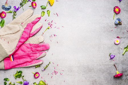 garden frame: Pink garden gloves with flowers, leaves and plants on concrete background, top view, frame. Gardening and planting concept