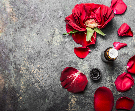 Red roses flowers and petals and bottle of essential oil on gray vintage background, top view, place for text
