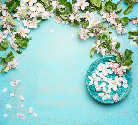 Spa or wellness turquoise background with  blossom and water bowl with white flowers, top view. Spring blossom background