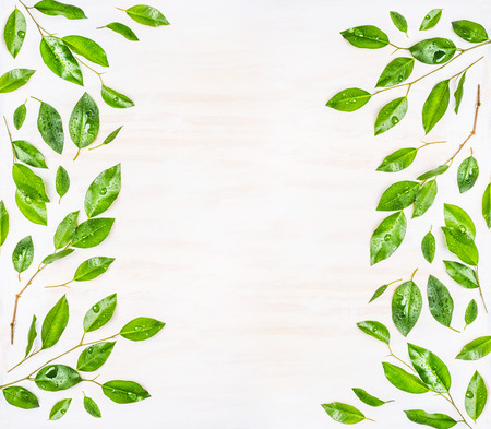 Beautiful Frame or pattern of  Green leaves with water drops on white wooden background, top view.  Ecology, organic or nature background
