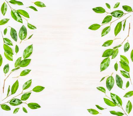 Mooi Frame of het patroon van groene bladeren met water druppels op een witte houten achtergrond, bovenaanzicht. Ecologie, organische of natuur achtergrond