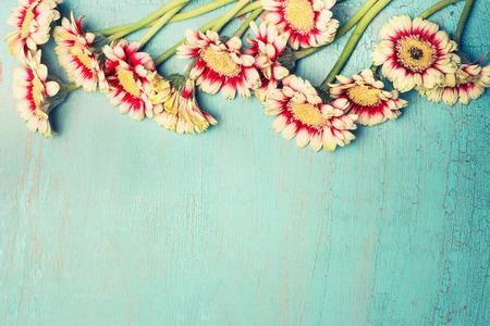 Mooie madeliefjes en gerbera bloemen op turkoois blauw shabby chic achtergrond, bovenaanzicht, grens. Feestelijke groet of uitnodiging kaart, horizontaal Stockfoto