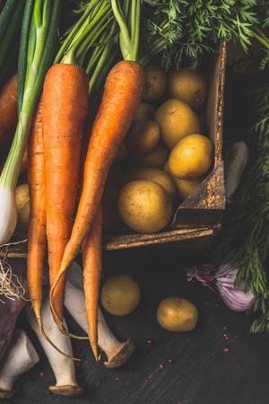 close up view: Autumn  harvest  vegetables for tasty vegetarian cooking on dark rustic background, top view, close up