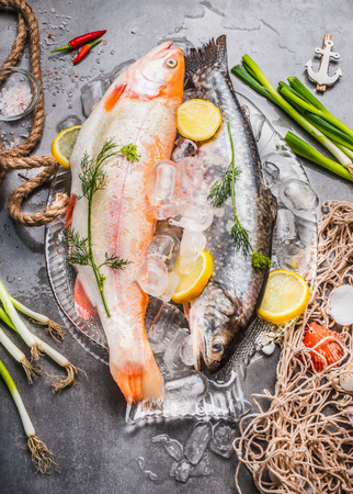 fish ice: Two raw  whole fish with fresh ingredients for tasty and healthy cooking. Gold Rainbow trout on concrete stone background with ice cubes and fishing net, top view. Fish dishes preparation.