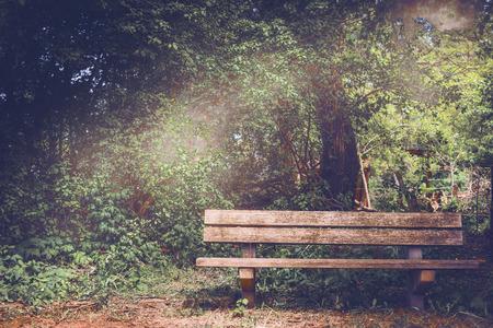 superficie: En blanco banco de madera vieja en una zona de sombra del jardín o en el parque, al aire libre