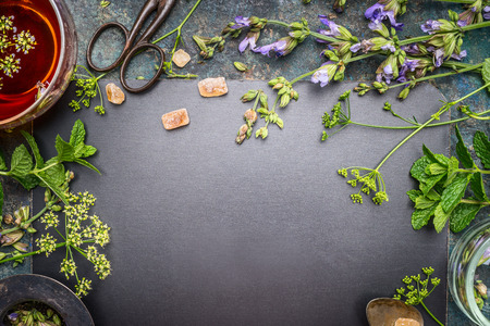 Herbal tea preparation with fresh herbs and flowers on black chalkboard background, top view, frame Stock Photo