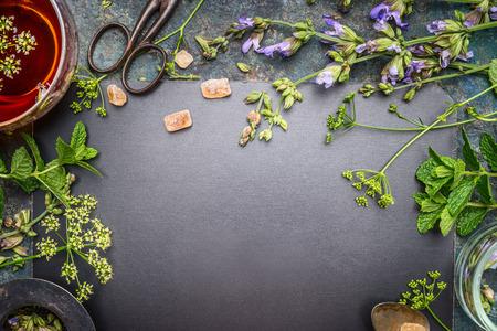 Herbal tea preparation with fresh herbs and flowers on black chalkboard background, top view, frame Standard-Bild