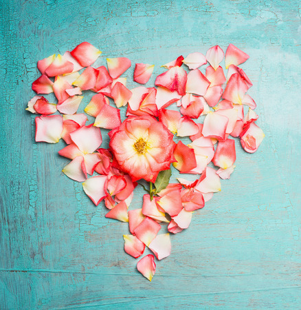 blue petals: Heart made ??out of pink pale rose petals on blue turquoise background, top view. Festive greeting card
