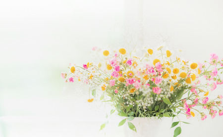 Daisies bunch  on light background, floral border