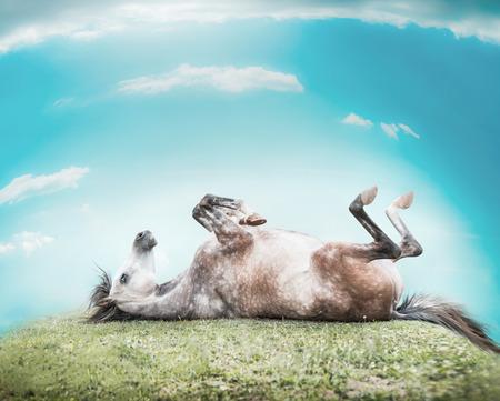 그의 위로, 발을 위로 올려 구름과 푸른 하늘의 배경에 녹색 잔디의 언덕에 쉬고 말 스톡 콘텐츠