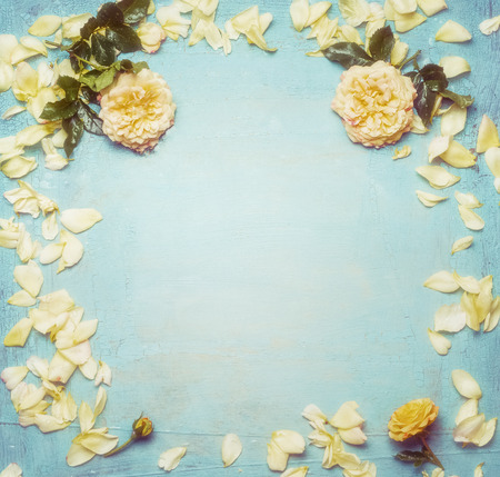 blue petals: Yellow roses with petals on turquoise blue shabby chic  background, top view, frame. Stock Photo