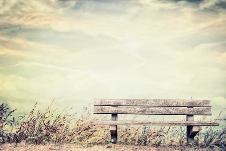 empty bench: Empty bench on grass and sky background, outdoor nature