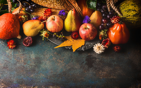 harvest background: Fall fruits and vegetables on dark rustic wooden background, top view,border. Autumn harvest concept.