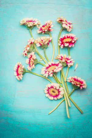 beauteous: Beauteous pink flowers bunch on shabby chic blue turquoise background, top view. Greeting card