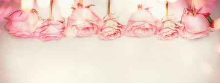 rosas blancas: Rosa rosa frontera floral con la iluminación bokeh, color pastel, bandera