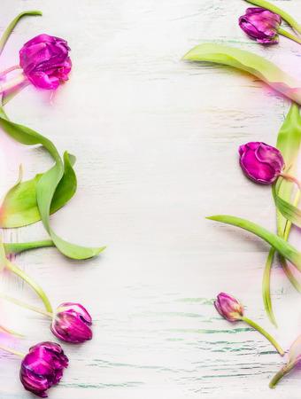 Tulpenkader op lichte sjofele elegante achtergrond, hoogste verticale mening ,. Lente bloemen concept. Stockfoto
