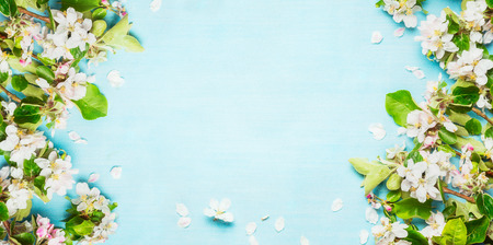 Springtime with Spring blossom twigs on blue turquoise background, top view, frame
