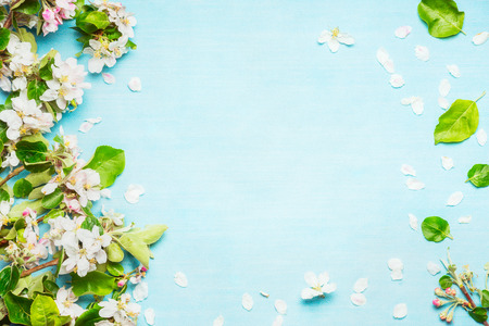 Spring blossom on blue turquoise background, top view, frame