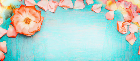 Pink pale rose petals border with bokeh on blue turquoise background, top view . Love , romantic and Valentines day concept