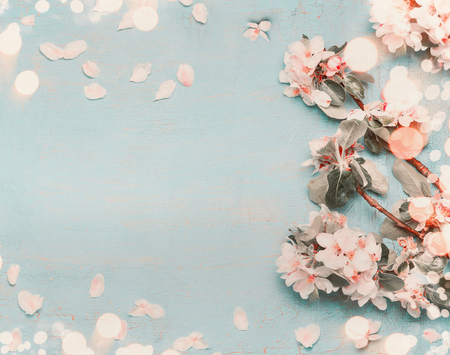 Pretty spring blossom on light blue background with bokeh, top view, pastel color, border 스톡 콘텐츠