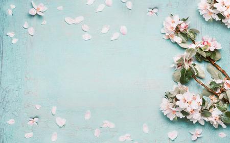 Frühling Natur Hintergrund mit schönen Blüte in blau Pastell Farbe, Draufsicht, Banner. Frühjahrskonzept