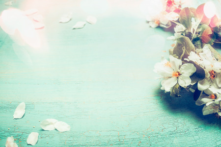 Pretty spring blossom with bokeh lighting on  turquoise blue wooden background , top view, frame. Springtime concept