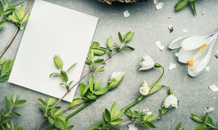 mother love: Springtime flowers and twigs and  blank white card for graters, top view Stock Photo