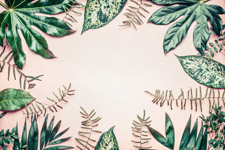 Creative nature frame made of tropical  palm and fern leaves on pastel background, top view Banco de Imagens