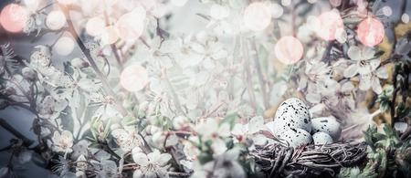 桜の花に卵を鳥の巣。かなり春、自然の背景とバナーをイースター