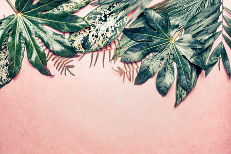Nature border with various  jungle leaves on pastel pink background, top view 스톡 콘텐츠