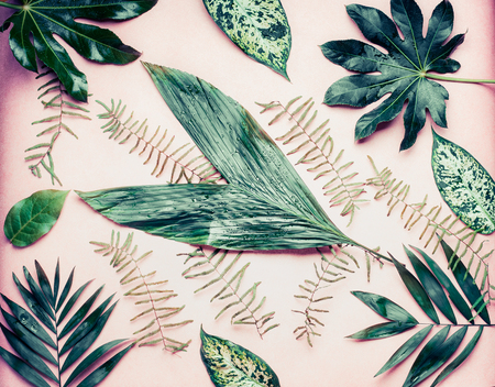 A lot of various palm tree leaves on pastel pink background, top view, flat lay Фото со стока