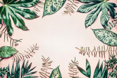 Telaio di natura creativa fatta di foglie di palmo e felce tropicale su sfondo pastello, vista dall'alto Archivio Fotografico - 75392707