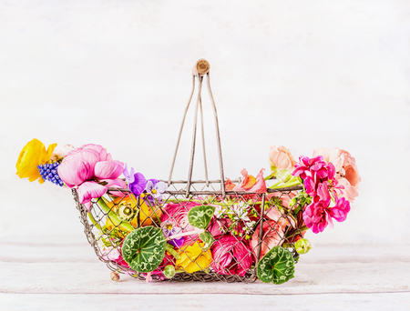 Vintage basket with various colorful garden flowers at white wooden background, front view. Summer gardening concept