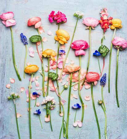 Plat poser de fleurs de jardin magnifique coloré de l'été sur fond bleu shabby chic de sélection turquoise, vue de dessus Banque d'images - 75863671