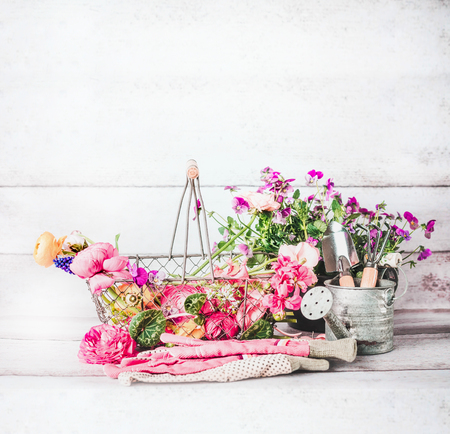Summer gardening with basket of flowers, garden tools and watering can at white wooden background, front view