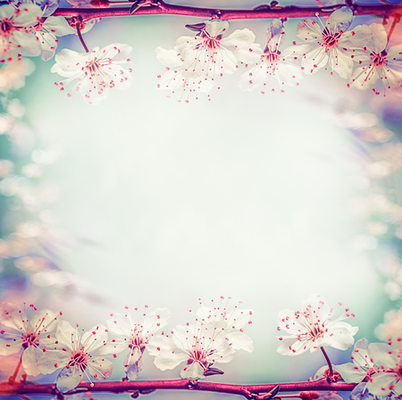 Springtime floral frame with pretty cherry or sakura blossom, at bokeh background