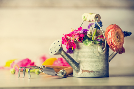 Watering can with garden flowers bunch and gardening tools on table, front view Stock Photo