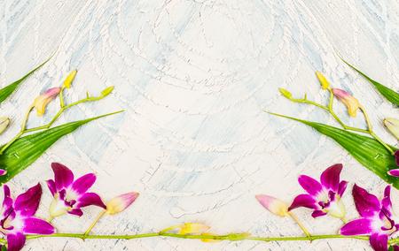 gazer: Purple Lilies on light shabby chic background, florist arrangements, floral border