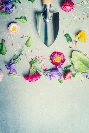 Gardening background with flowers, petals and shovel, top view