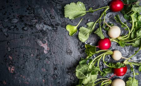 Colorful radishes with green haulm leaves on dark rustic background, top view, place for text. Clean healthy organic vegan or vegetarian food concept Stock Photo