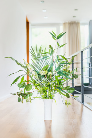 Green indoor plant arrangement in vase at light floor and window background. Urban living and styling with green plant