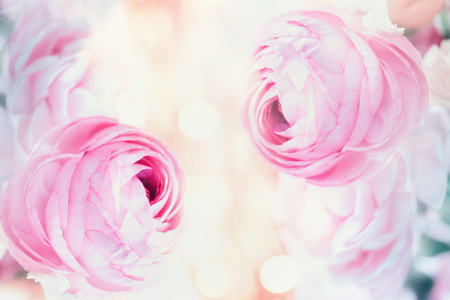 Pink floral pastel background with bokeh