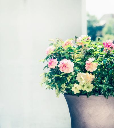 Mooie terraspot met rozen en petunia's op balkon of terras. Container planter tuinieren Stockfoto - 80994571