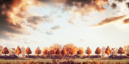 Beautiful autumn landscape panorama with trees, field and sky. Fall outdoor nature background, banner